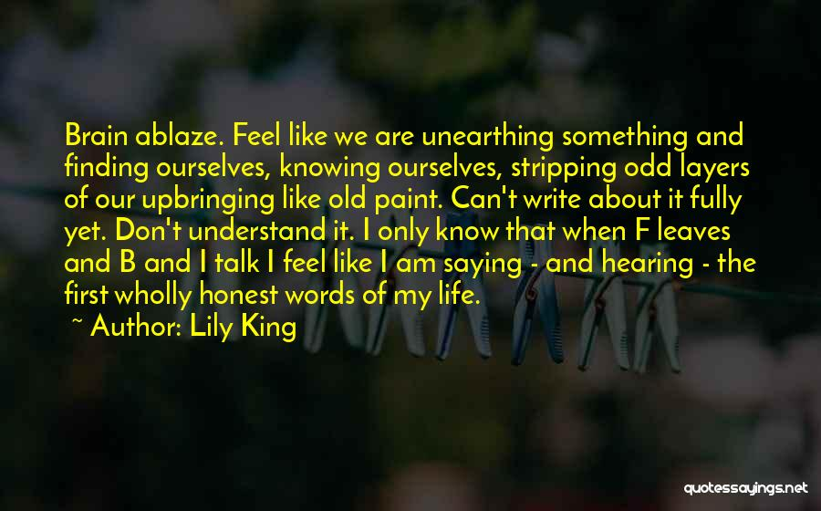 Layers Of Life Quotes By Lily King