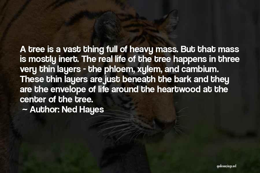 Layers Of Life Quotes By Ned Hayes