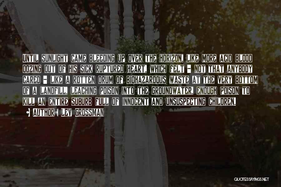 Leaching Quotes By Lev Grossman