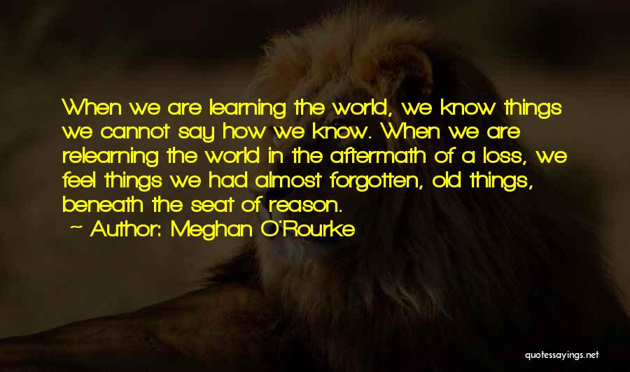 Learning And Relearning Quotes By Meghan O'Rourke