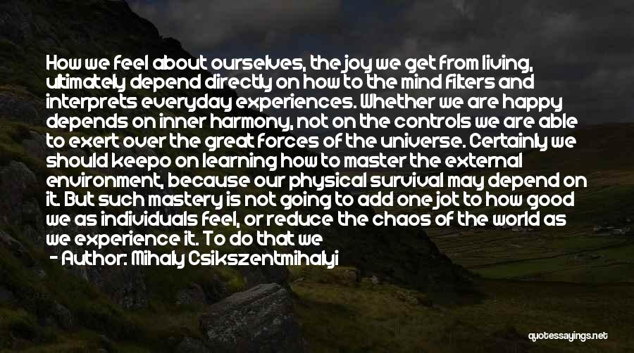 Learning From Experiences Quotes By Mihaly Csikszentmihalyi