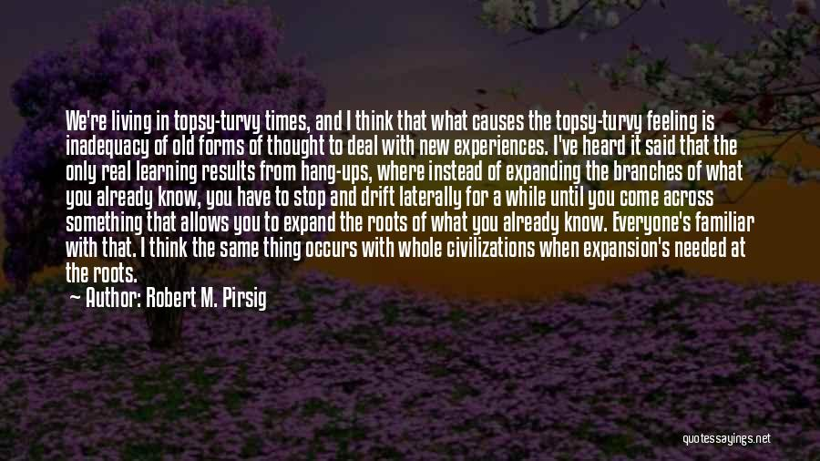Learning From Experiences Quotes By Robert M. Pirsig