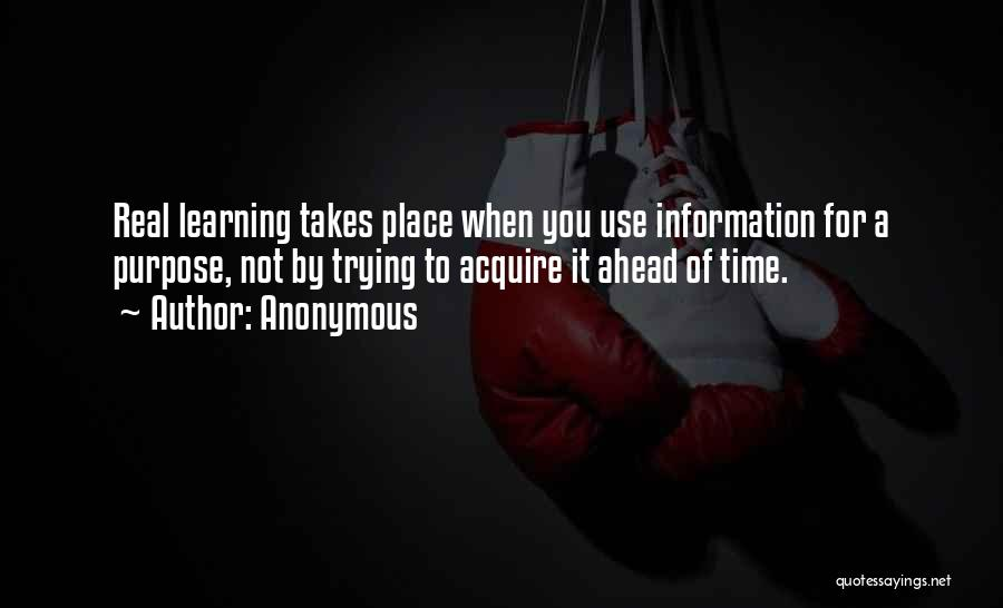 Learning Takes Time Quotes By Anonymous