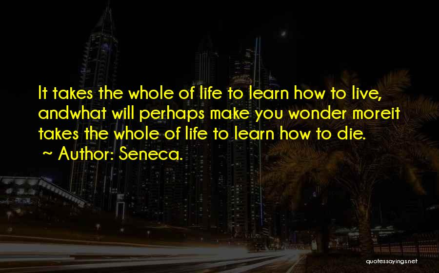 Learning Takes Time Quotes By Seneca.