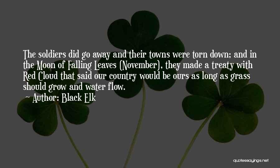 Leaves Of Grass Quotes By Black Elk