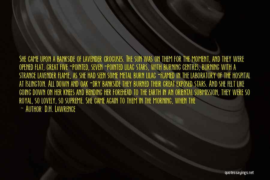 Leaves Of Grass Quotes By D.H. Lawrence