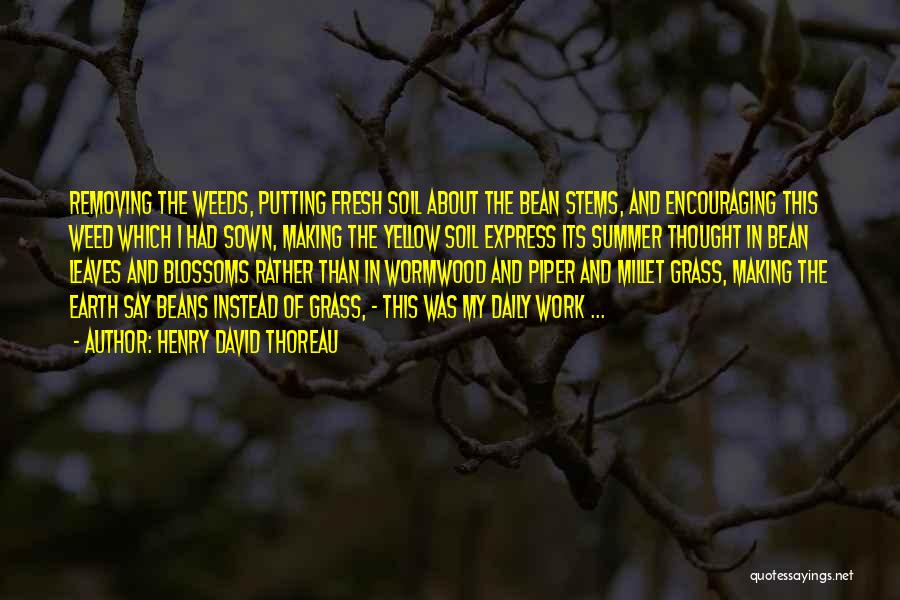 Leaves Of Grass Quotes By Henry David Thoreau