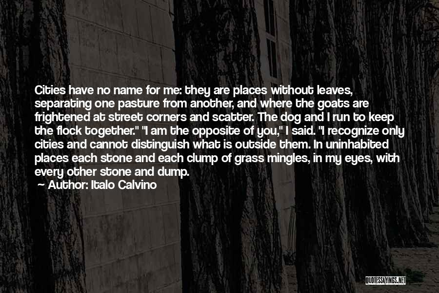 Leaves Of Grass Quotes By Italo Calvino