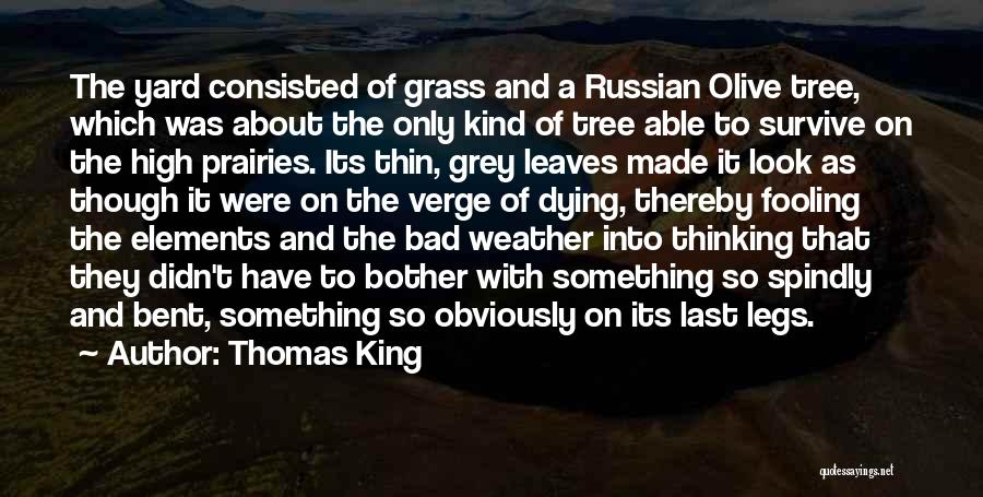 Leaves Of Grass Quotes By Thomas King