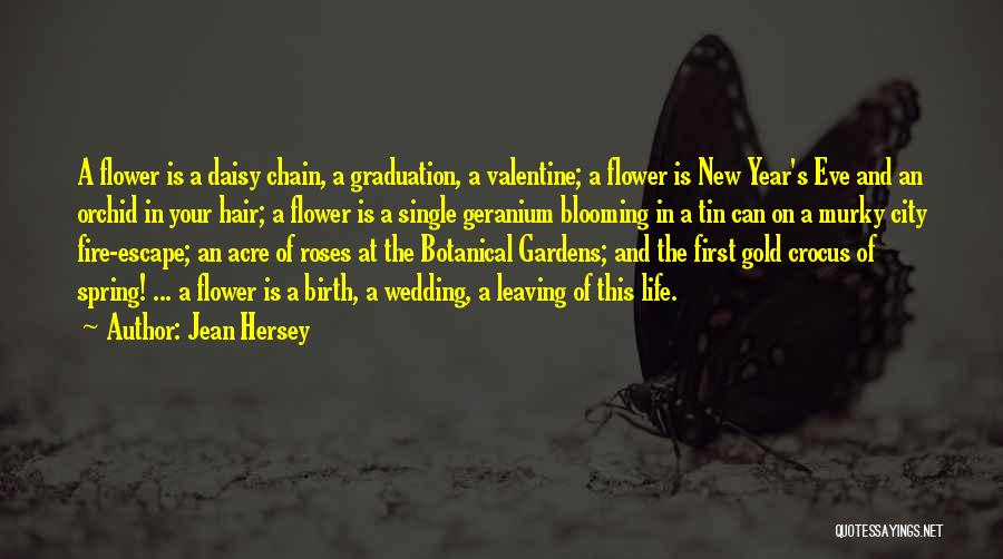 Leaving Single Life Quotes By Jean Hersey