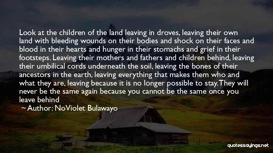 Leaving Someone In The Past Quotes By NoViolet Bulawayo