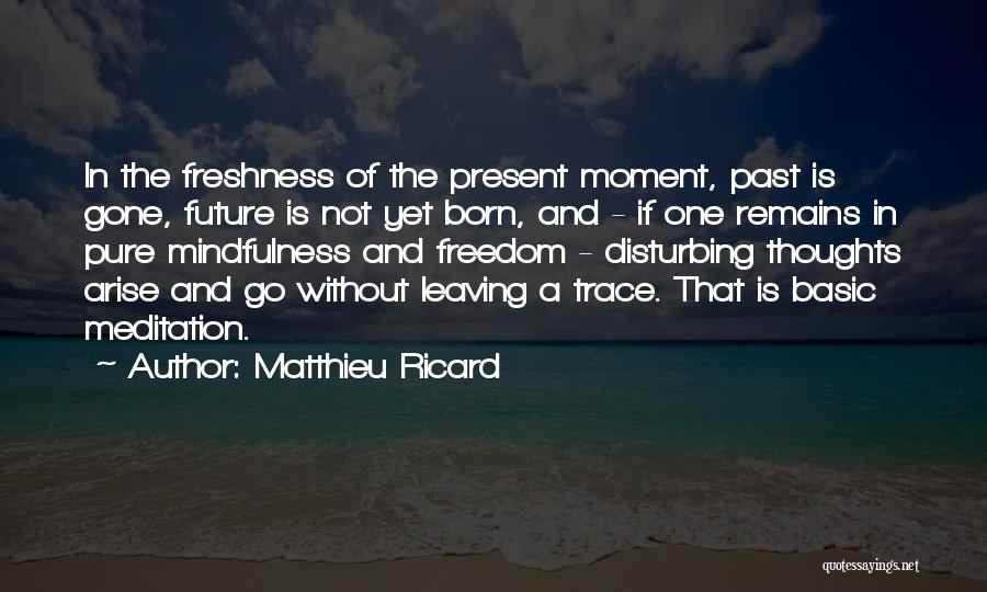Leaving The Past In The Past Quotes By Matthieu Ricard