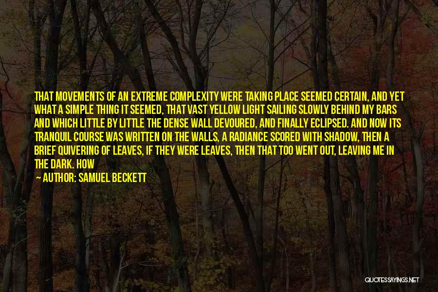 Leaving The Place Quotes By Samuel Beckett