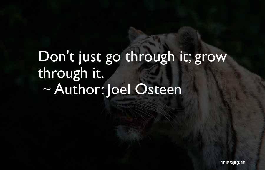 Lee Ji Eun Quotes By Joel Osteen