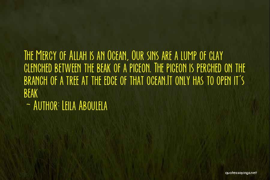 Leila Aboulela Quotes 325063