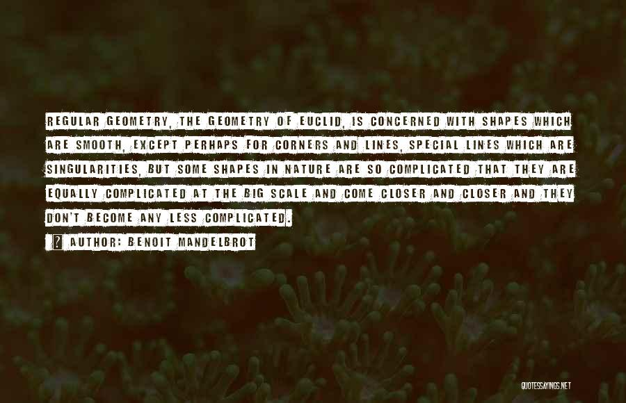 Less Concerned Quotes By Benoit Mandelbrot