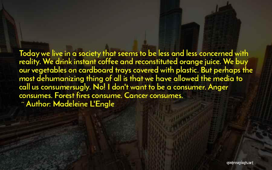 Less Concerned Quotes By Madeleine L'Engle
