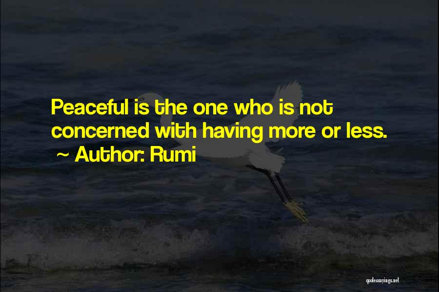 Less Concerned Quotes By Rumi