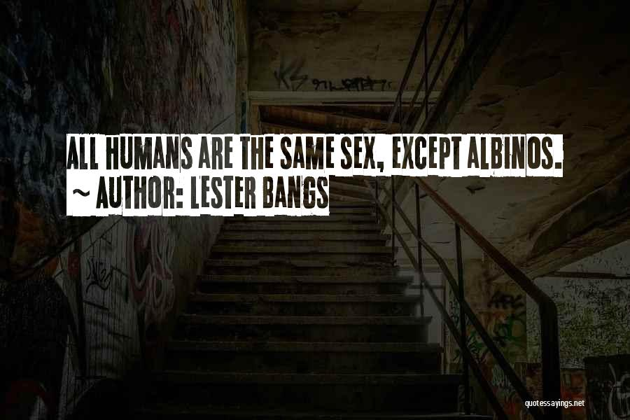 Lester Bangs Quotes 2010338