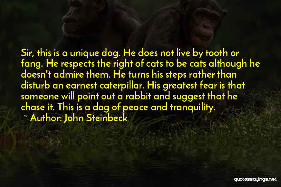 Let Me Live In Peace Quotes By John Steinbeck