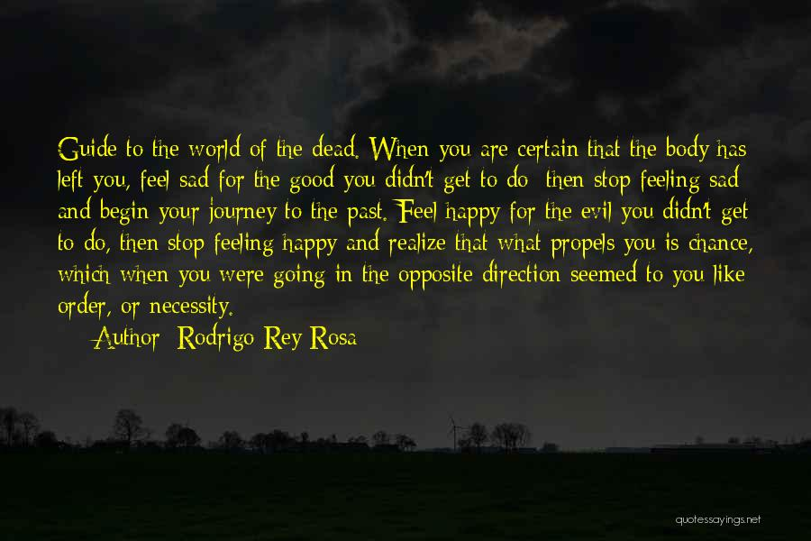 Let The Journey Begin Quotes By Rodrigo Rey Rosa