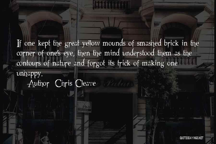 Let's Get Smashed Quotes By Chris Cleave