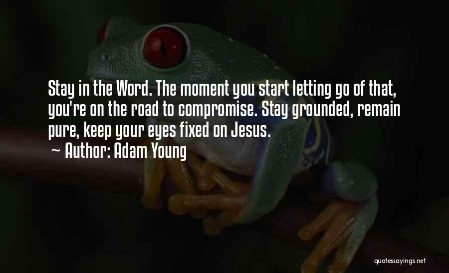Letting Go Quotes By Adam Young