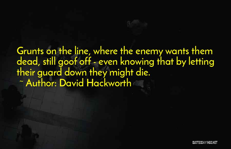 Letting Guard Down Quotes By David Hackworth