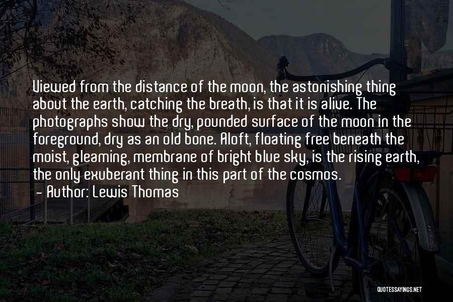 Lewis Thomas Quotes 553499