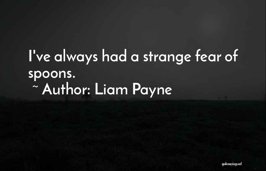 Liam Payne Quotes 1039411