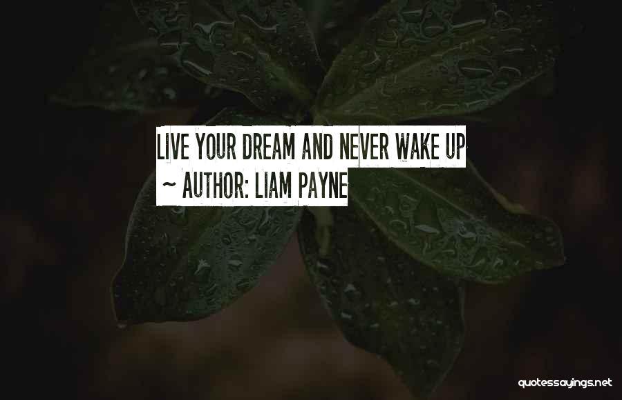 Liam Payne Quotes 1115343