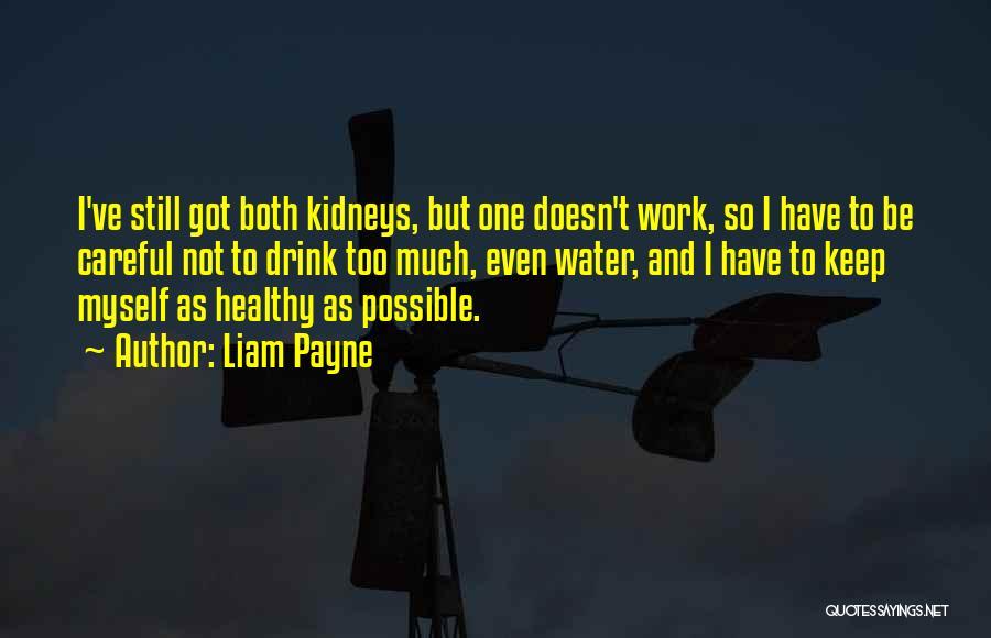 Liam Payne Quotes 1528364