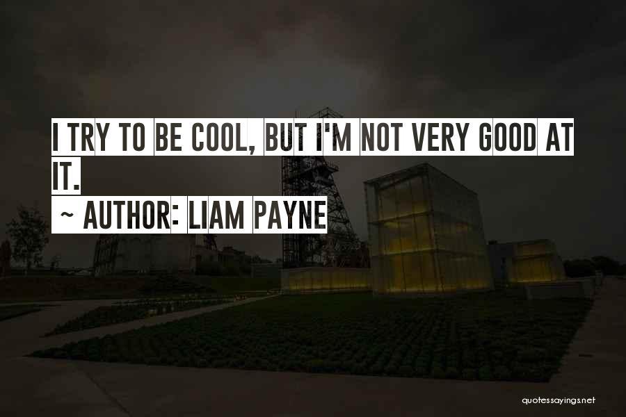 Liam Payne Quotes 538855