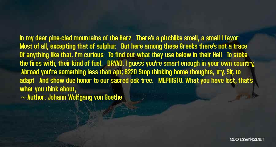 Library Bulletin Board Quotes By Johann Wolfgang Von Goethe