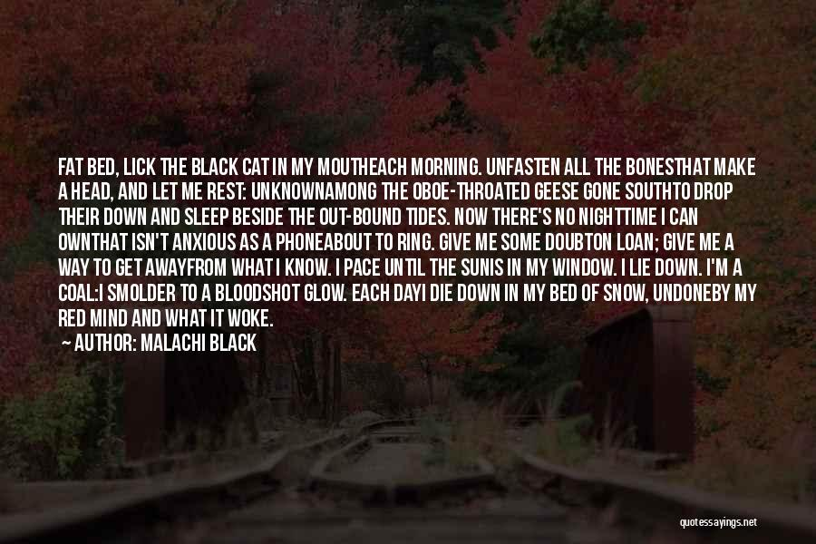 Lick Me Quotes By Malachi Black