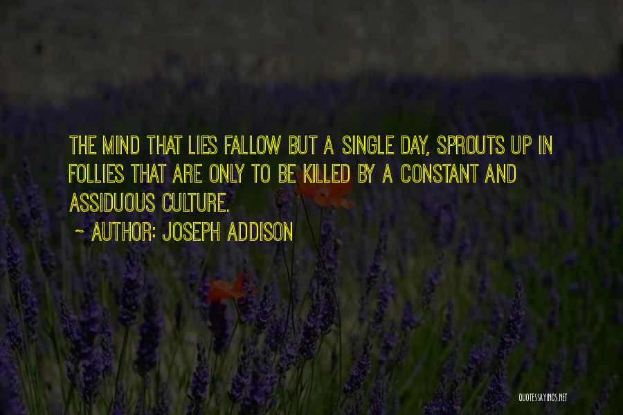 Lies And Quotes By Joseph Addison