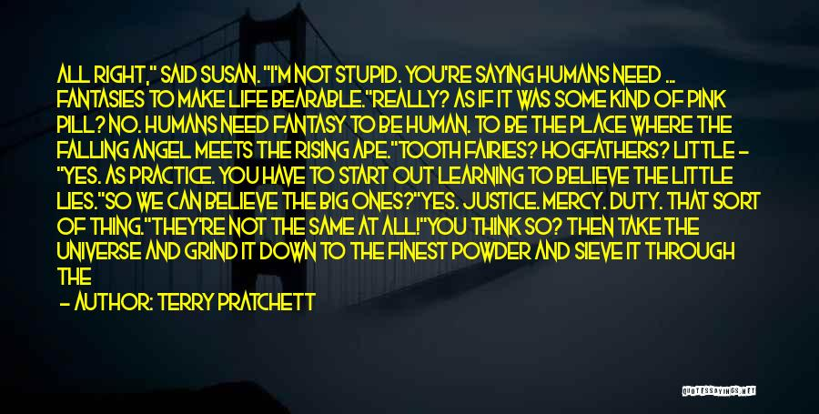 Lies We Believe Quotes By Terry Pratchett
