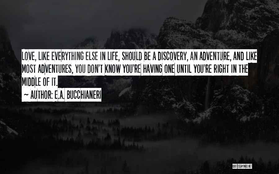 Life Adventures Quotes By E.A. Bucchianeri