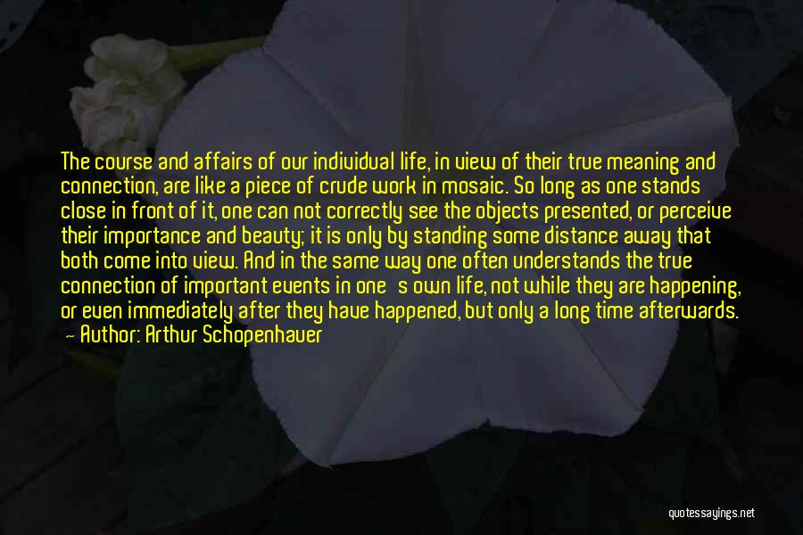 Life And It's Meaning Quotes By Arthur Schopenhauer