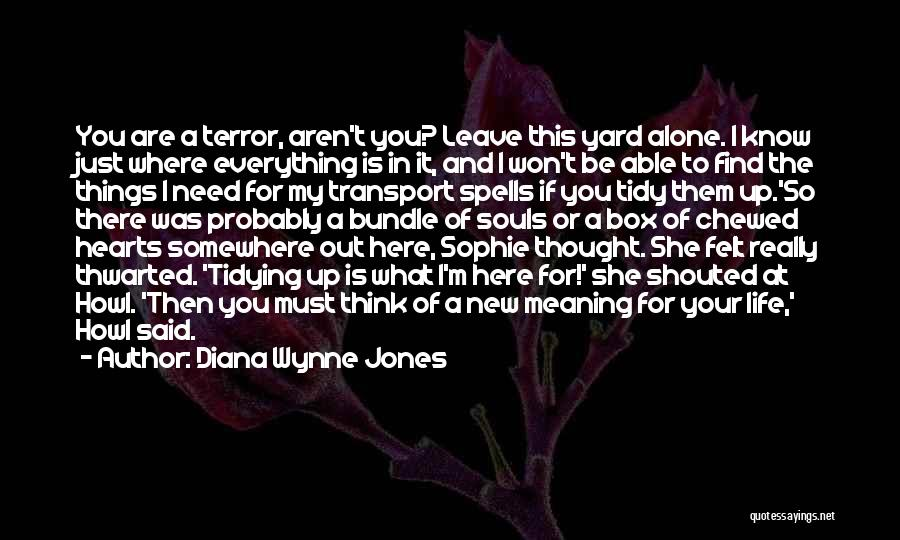 Life And It's Meaning Quotes By Diana Wynne Jones