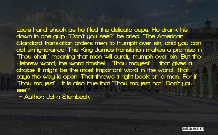 Life And It's Meaning Quotes By John Steinbeck