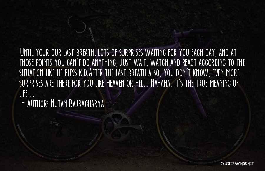 Life And It's Meaning Quotes By Nutan Bajracharya