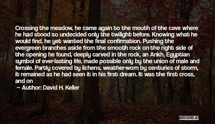 Life And Not Knowing The Future Quotes By David H. Keller