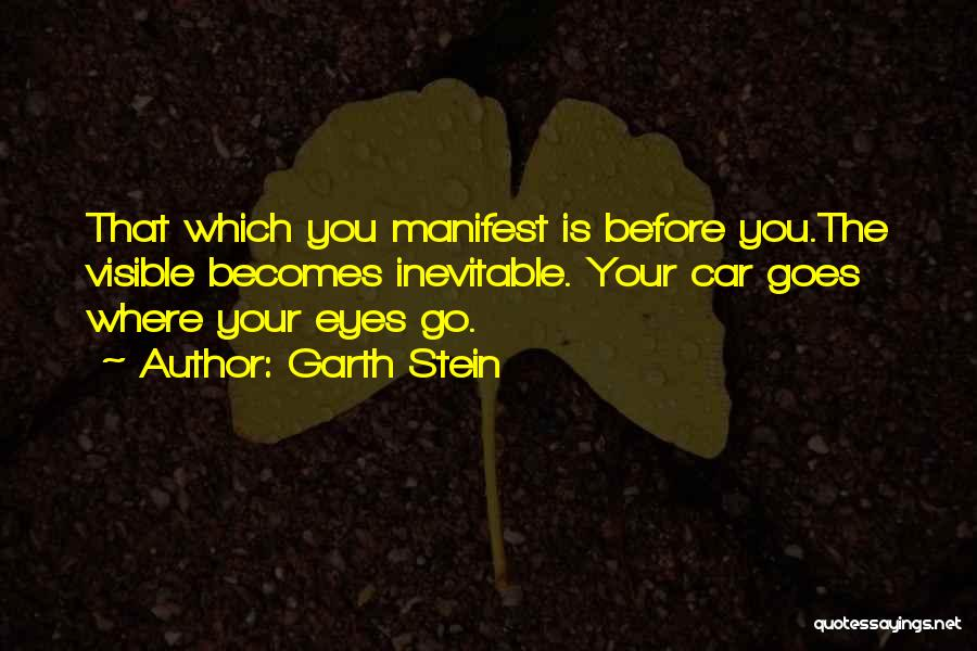 Life Before Your Eyes Quotes By Garth Stein