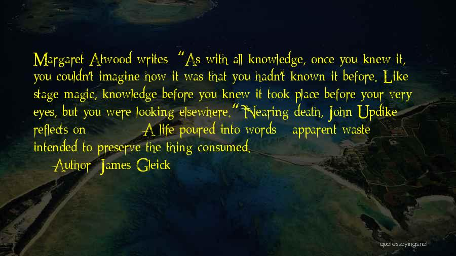 Life Before Your Eyes Quotes By James Gleick