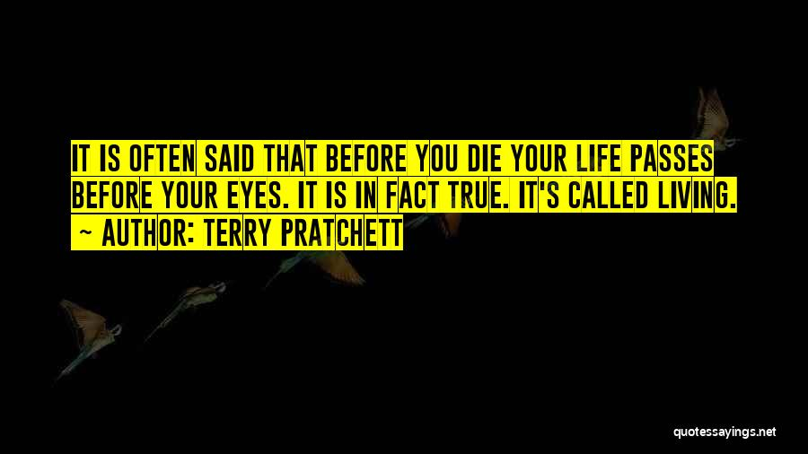 Life Before Your Eyes Quotes By Terry Pratchett