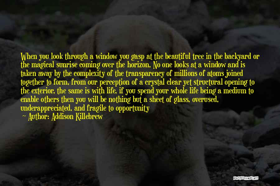 Life Being Taken Too Soon Quotes By Addison Killebrew