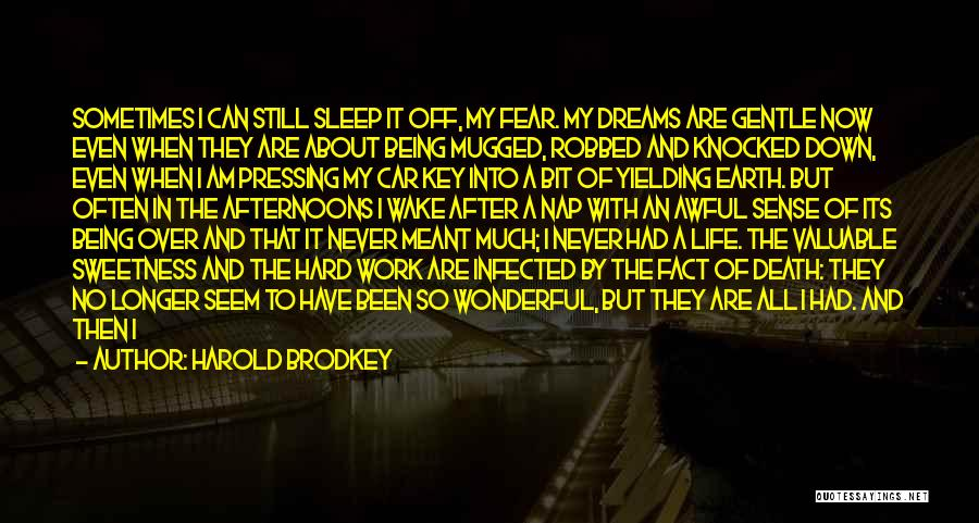 Life Can Be Hard Sometimes Quotes By Harold Brodkey
