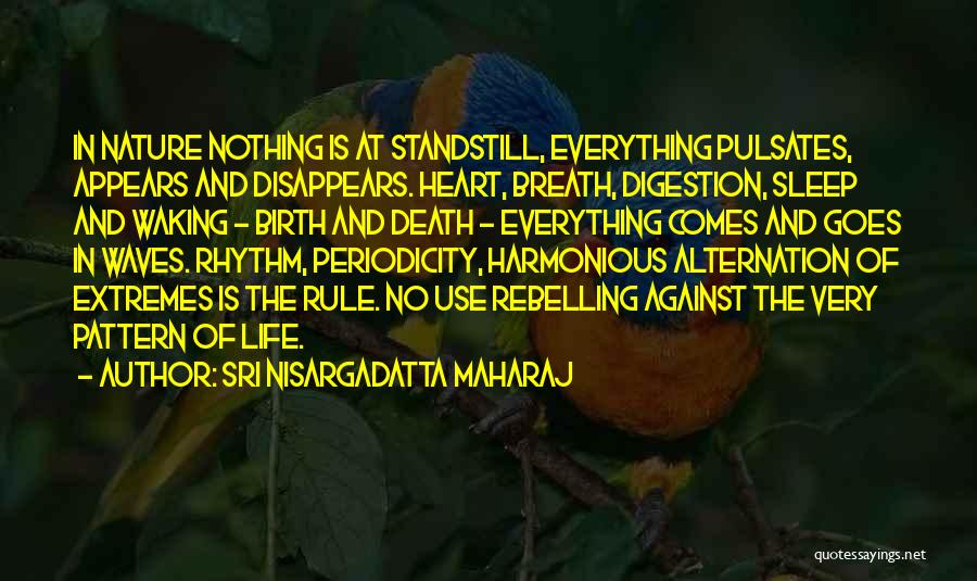 Life Comes And Goes Quotes By Sri Nisargadatta Maharaj