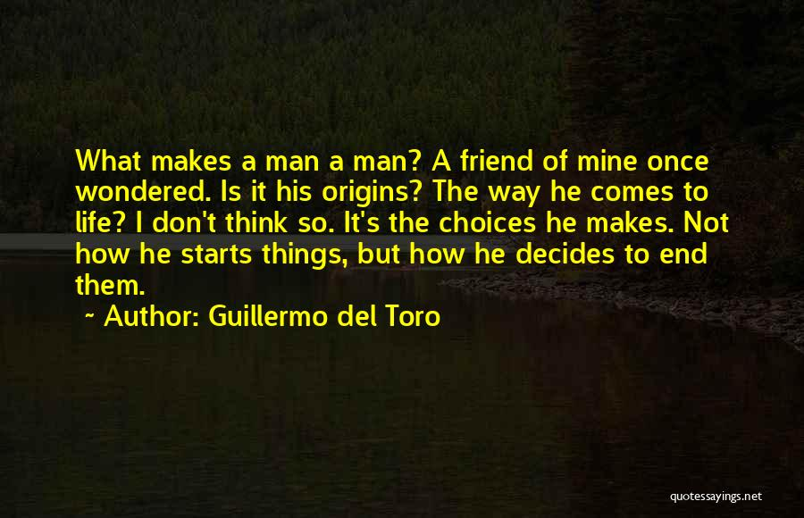 Life Comes Once Quotes By Guillermo Del Toro
